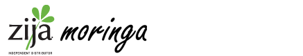 zija logo can you make money in zija